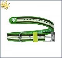 Schwimmhalsband Stripe Grün