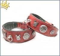 Malucchi Hundehalsband Imperial Bulldogge Braun
