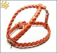 Leder-Hundegeschirr Ascot Orange