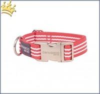 Canvasco Hundehalsband Greta Rot Alu Klein