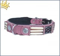 Hundehalsband Pink Eagle 25mm