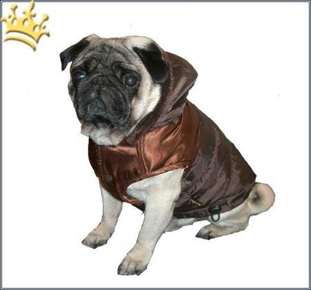 hundemantel dakota schoko hundem ntel hundebekleidung cani di mondo exklusiver hunde. Black Bedroom Furniture Sets. Home Design Ideas