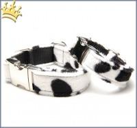 Fellhalsband Dalmatiner