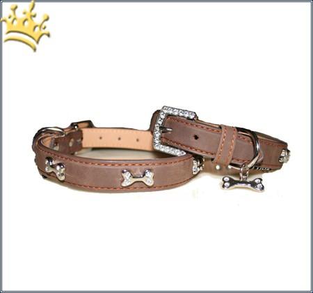 Hundehalsband Kingston Caramel