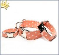 Hundehalsband Little Star Orange