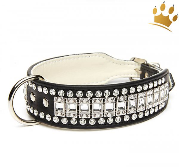 Halsband Hollywood Deluxe Schwarz