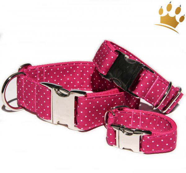 Hundehalsband Little Dotty Fuchsia