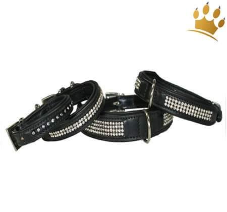 Hundehalsband Mon Bijou