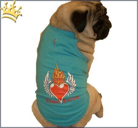 Hunde-Shirt True Love