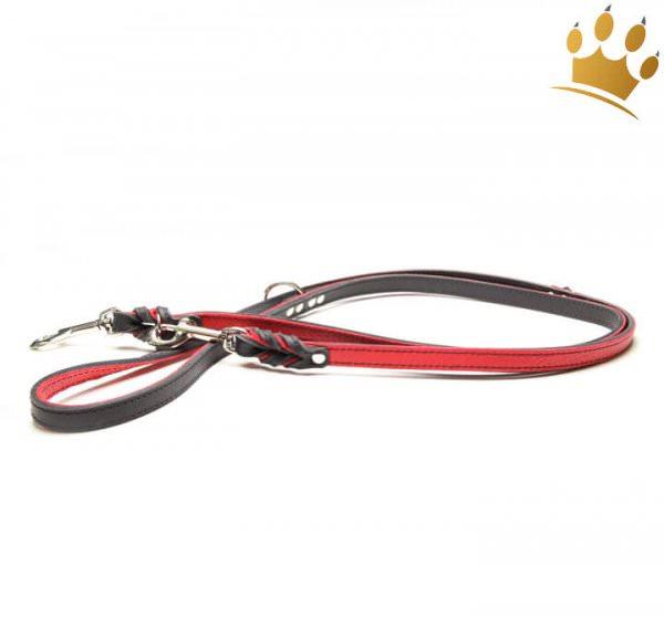 Hundeleine Silver Rot 200cm