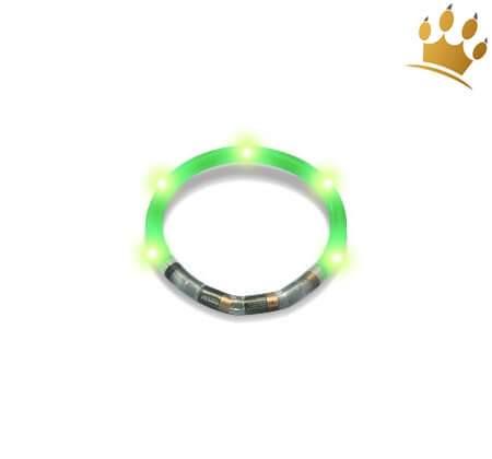 Hundeleuchtring Grün
