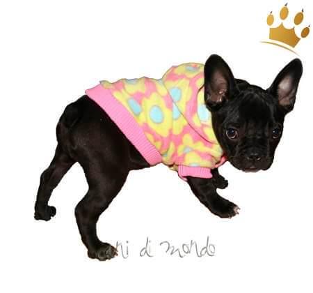 Hundefleecejacke Flower Power pink