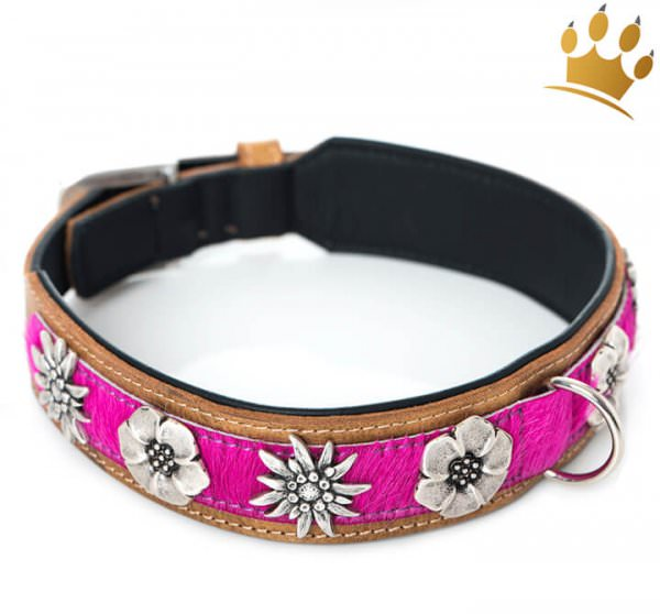 Hundehalsband Blütenmeer Pink