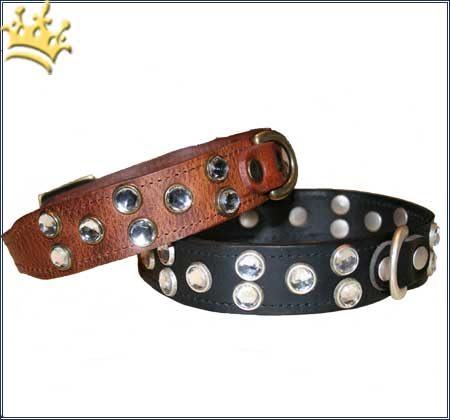 Hundehalsband Diamonds are forever cognac