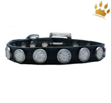 Hundehalsband Moneymaker Schwarz