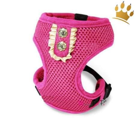 Hundegeschirrset 4 in1 Rokoko Pink