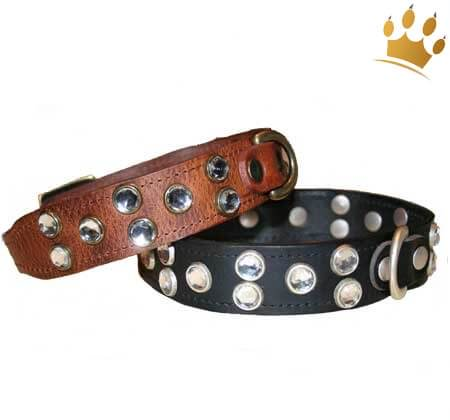 Hundehalsband Diamonds are forever schwarz