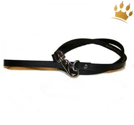 Hundeleine Brilliant Paw schwarz