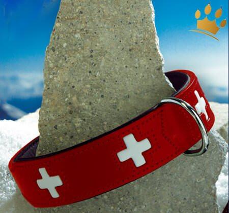 Hundehalsband Swiss rot