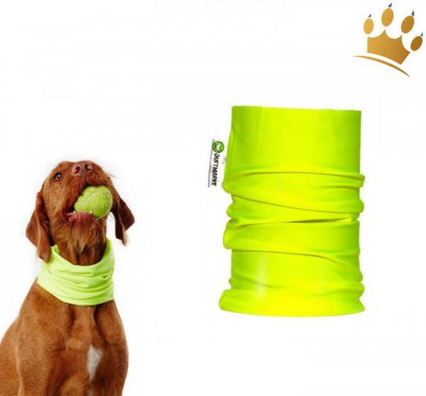 Hunde-Loop Schal Sport Dogactive  Neon Grün
