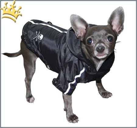 Hunderegenjacke Pupagolia