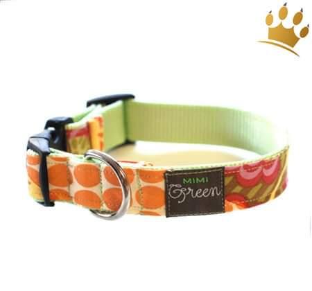 Hundehalsband Tangerine