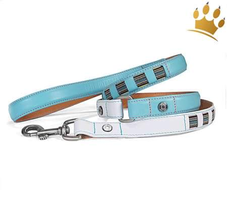 Hundeleine Canini® Speedster