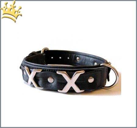 Hundehalsband Cross Over Schwarz