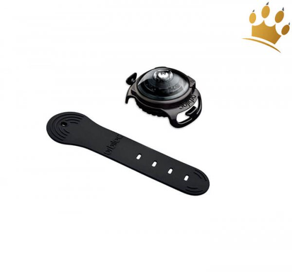 Orbiloc Leuchtbutton Dog Dual Dark