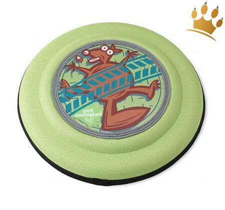 Hunde-Frisbee Crazy Eichhörnchen
