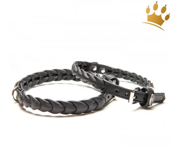 Hundehalsband Ascot Petit Schwarz