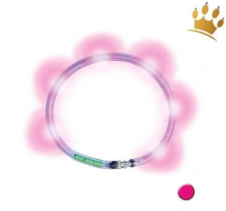 LumiVision® Hundeleuchthalsband Pink