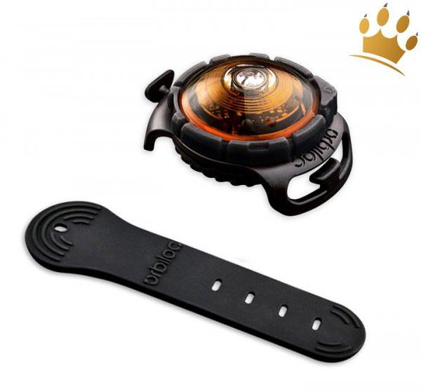 Orbiloc Leuchtbutton Dog Dual Amber