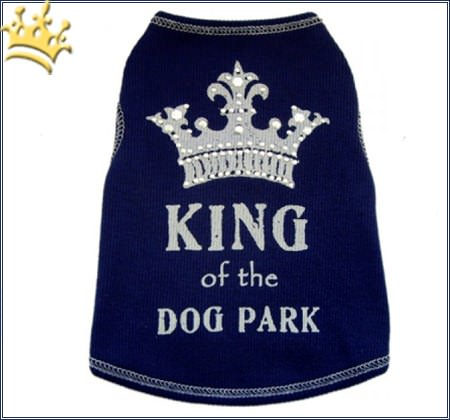 Hunde Shirt King of the Dog Park