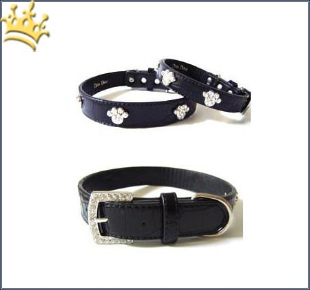 Hundehalsband Shiny Paws