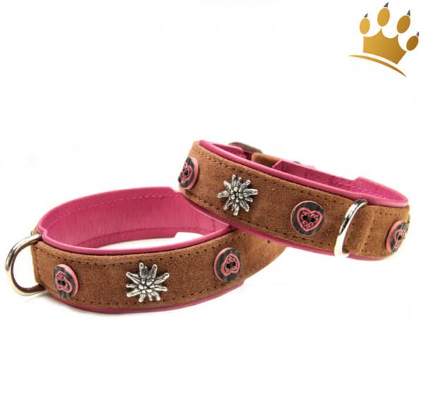 Hundehalsband Alpen Knöpfli Pink