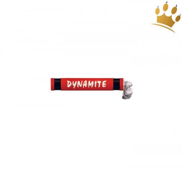 Hundespielzeug Dynamite
