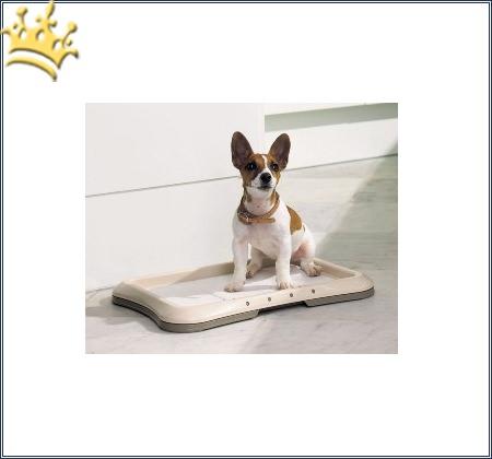 Savic Puppy Trainer Hundetoilette