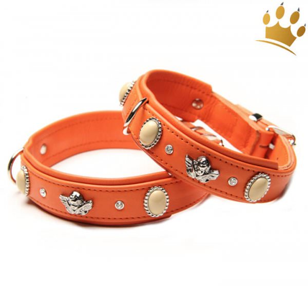 Hundehalsband Bella Angelo Orange Petit