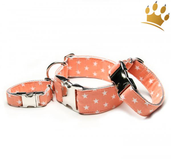 Hundehalsband Little Star Orange