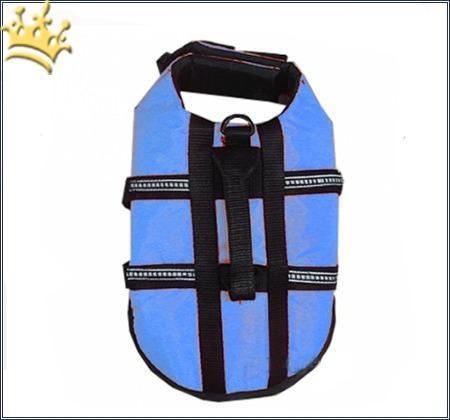 Hundeschwimmweste Easy Safe Blau