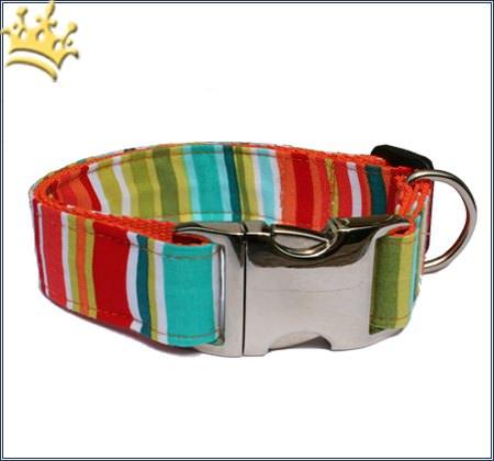 Hundehalsband Lolly Pop