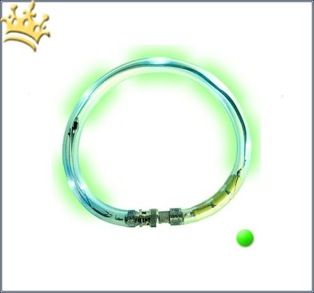 LumiVision® Hundeleuchthalsband Grün
