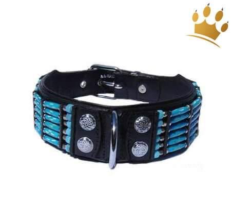 Hundehalsband Blue River 50mm