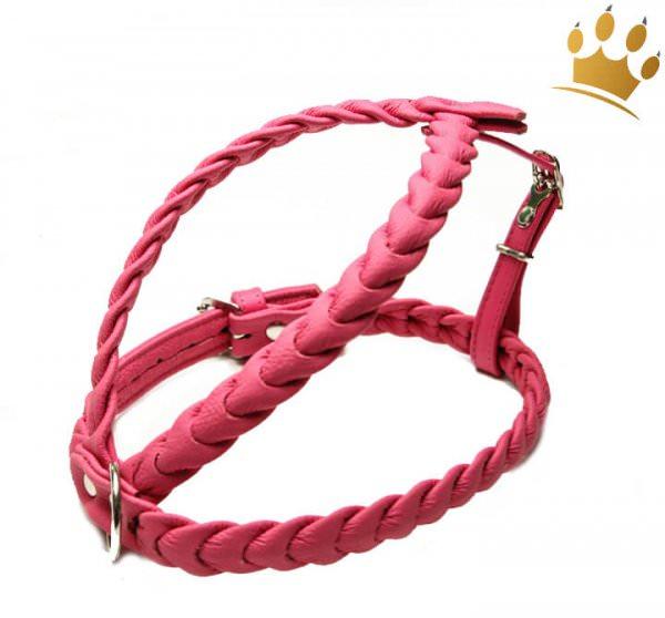 Leder-Hundegeschirr Ascot Himbeere
