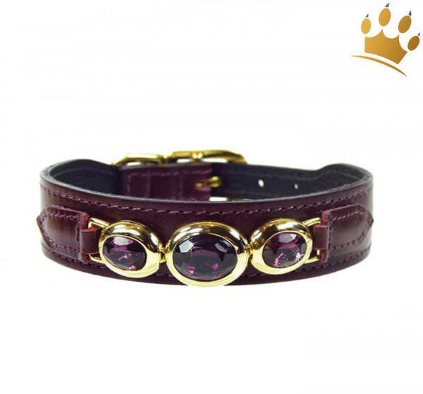 Hundehalsband Dakhla Bordeaux vergoldet