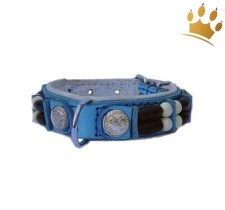 Hundehalsband Baby Blue Eagle 15mm