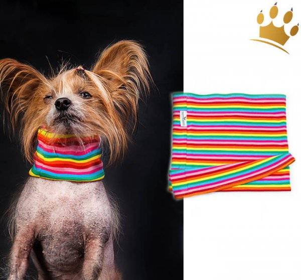 Hunde Loop Canicolor