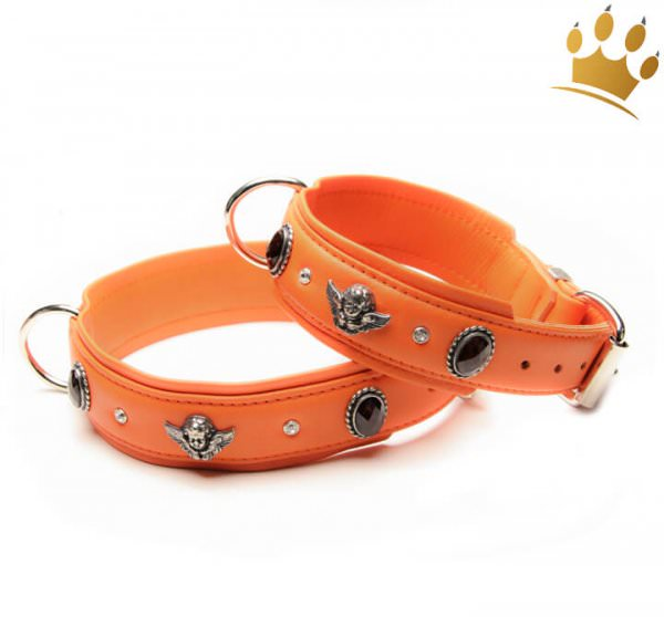 Hundehalsband Bella Angelo Orange