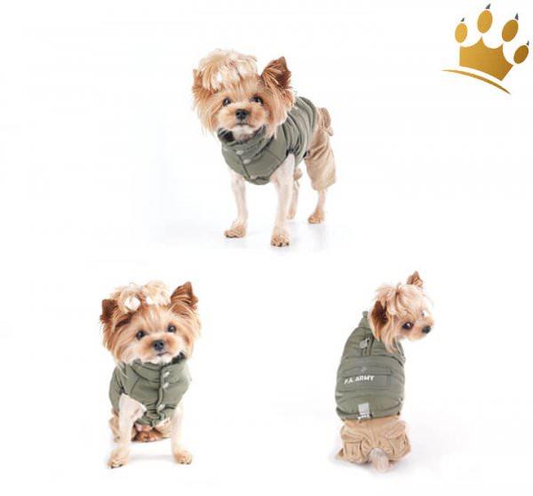 Puppy Angel Army Barmy Military Grün
